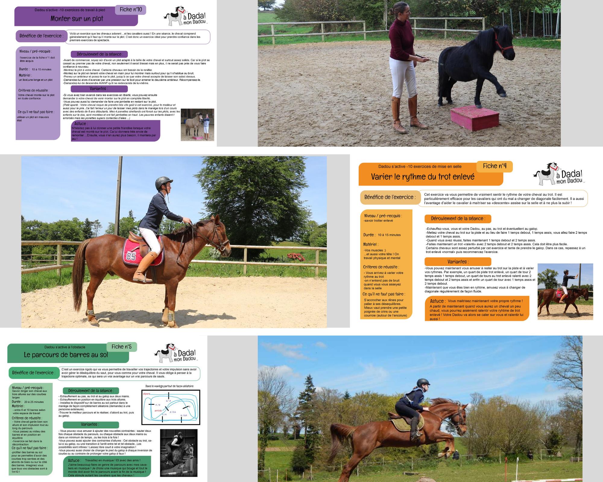 3 exercices à travailler à cheval
